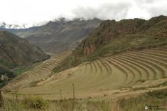 Pisac: Grandes sistemas de terrazas incas.